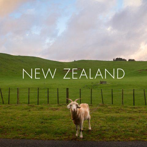 favimage_NewZealand